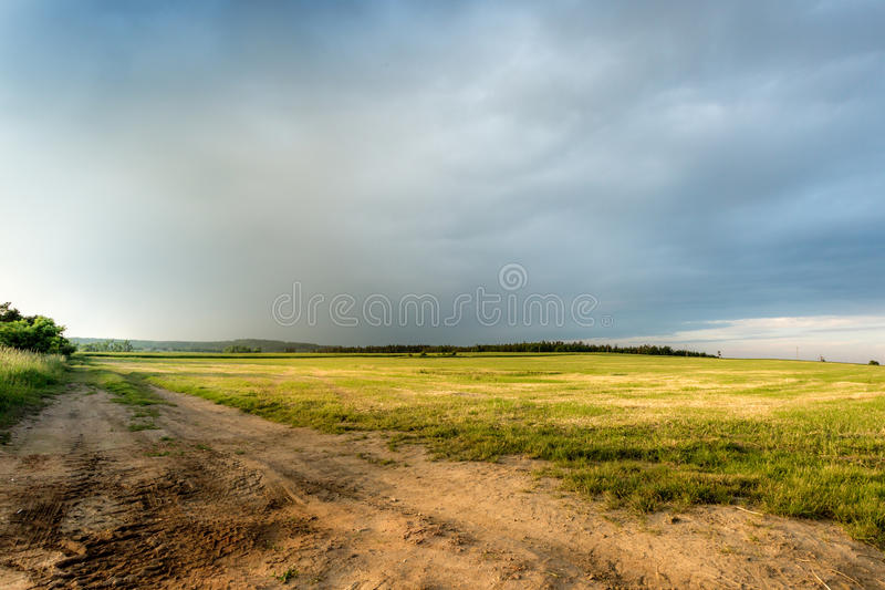 Campos da colza amarela com a estrada que vai a indefinido imagens de stock royalty free