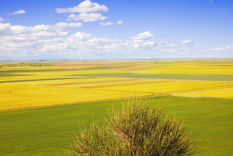 Download Campos de Castilla na mola imagem de stock. Imagem de vale - 10060605