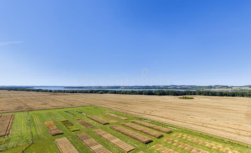 Campos de ensayo agrícolas fotografía de archivo
