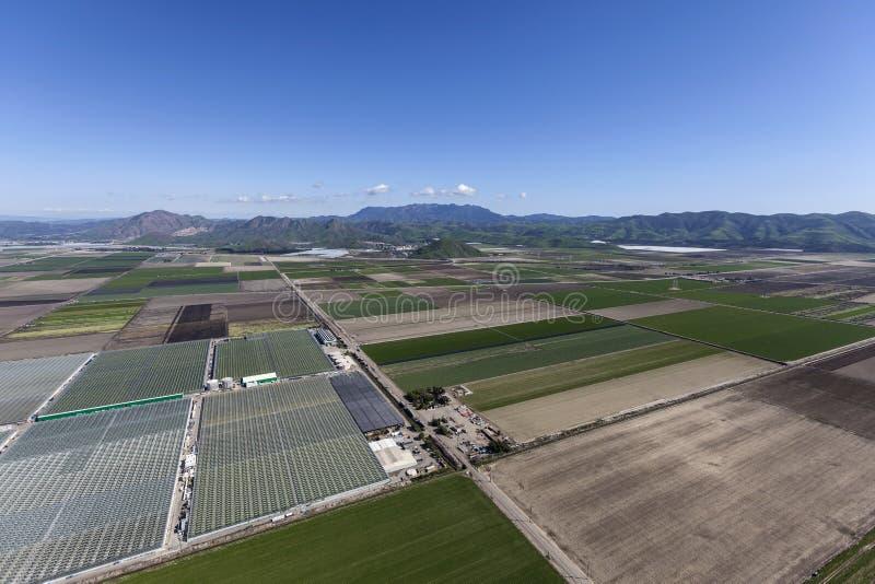 Campos de exploração agrícola da vista aérea perto de Camarillo Califórnia imagem de stock