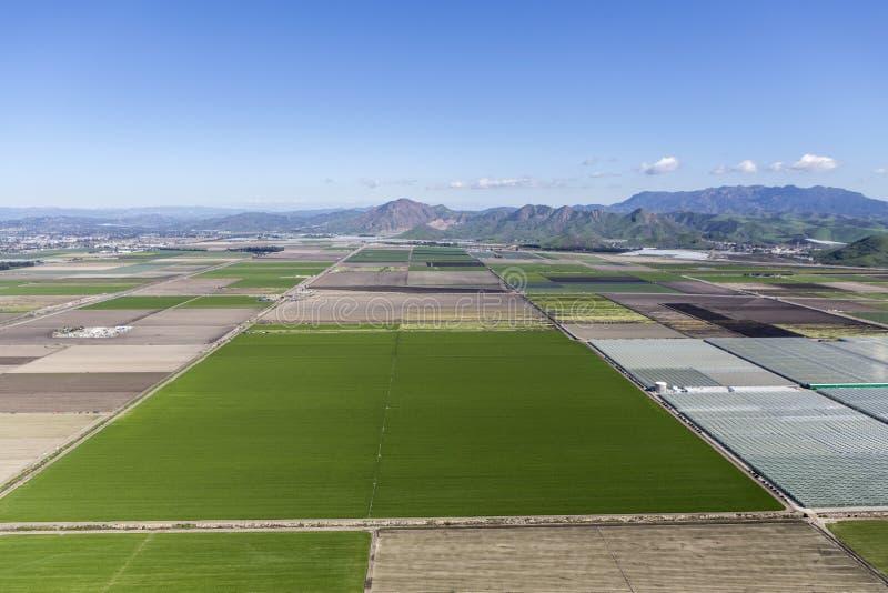 Campos de exploração agrícola de Camarillo Califórnia aéreos fotos de stock