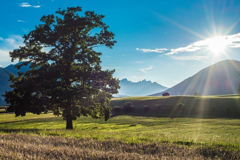 Campos de Fietch em Sonnenplateau, Áustria imagens de stock