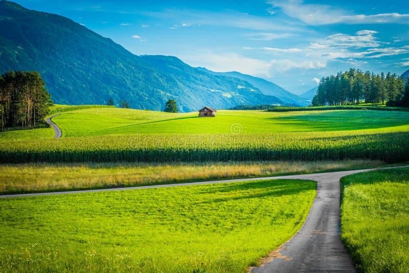 Campos de Fietch em Sonnenplateau, Áustria fotos de stock