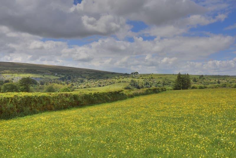 Campos de Inglaterra del oeste del sur imagen de archivo