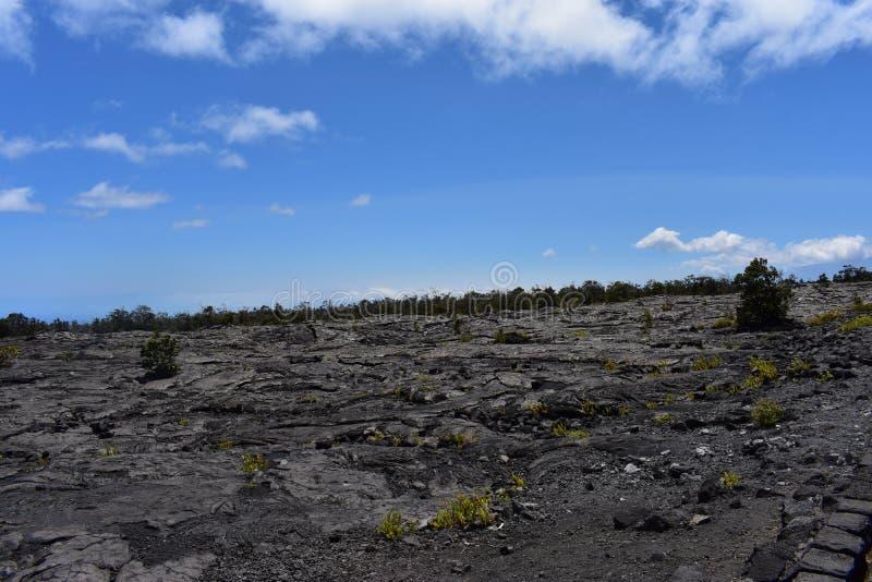 Campos de lava en la isla grande en Hawaii con el Océano Pacífico en el fondo fotos de archivo libres de regalías