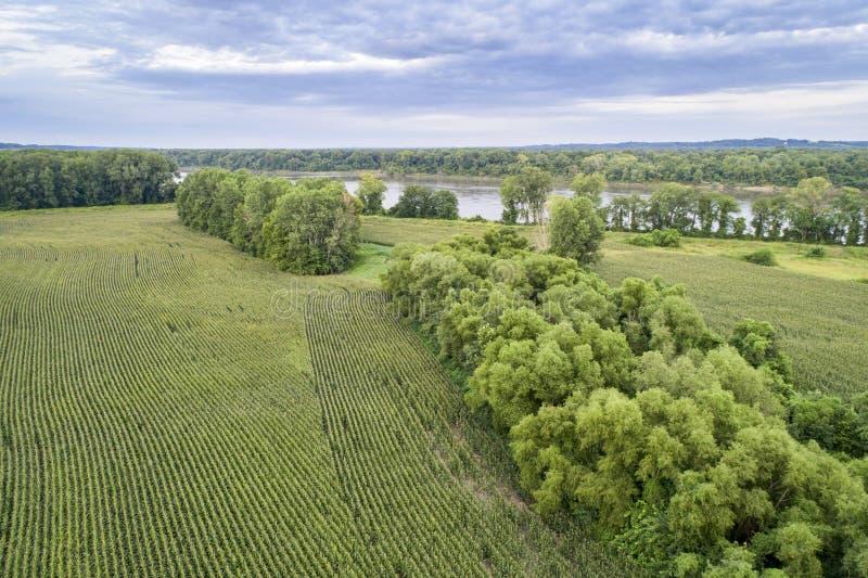 Campos de milho em um vale do Rio Missouri fotografia de stock