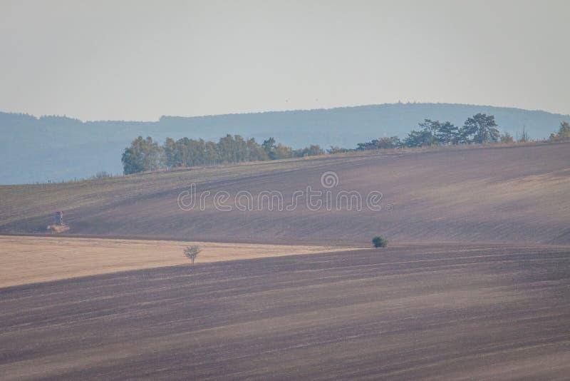 Campos de Moravian imagen de archivo
