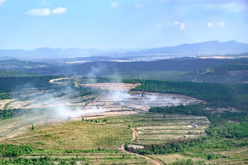 Campos de queimadura após a colheita do arroz na plantação em Camboja foto de stock