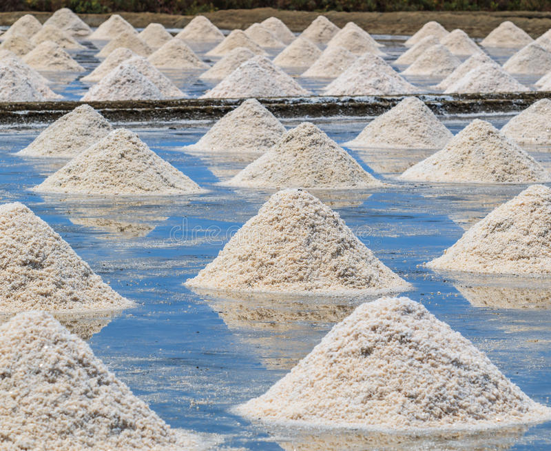 Campos de sal foto de stock