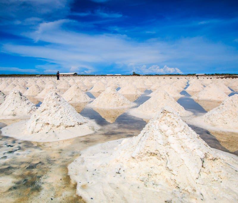 Campos de sal imagem de stock