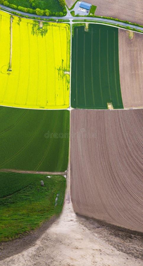 Campos de suspensão amarelos e verdes fotografia de stock