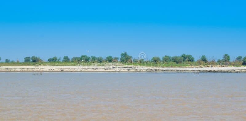 Campos de trigo verdes en el banco del río indus fotografía de archivo