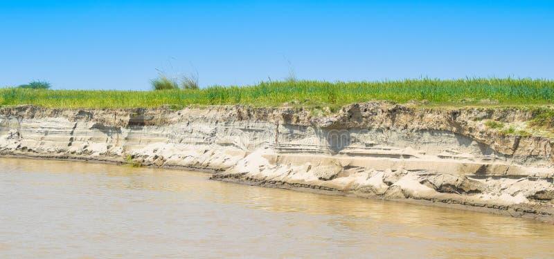 Campos de trigo verdes en el banco del río indus foto de archivo libre de regalías
