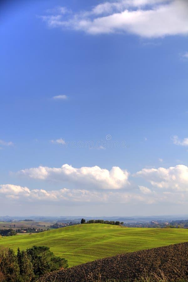 Campos de Tuscan imagens de stock royalty free