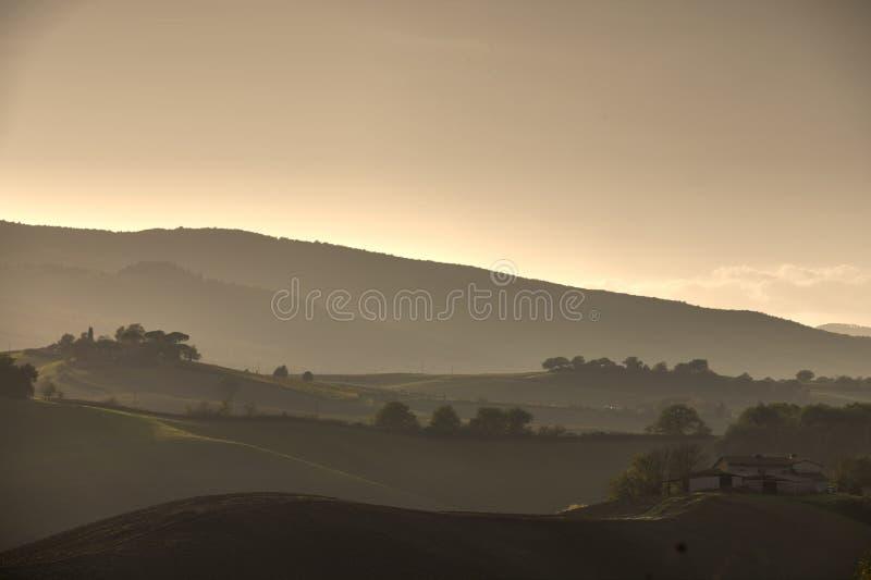 Campos de Tuscan imagens de stock