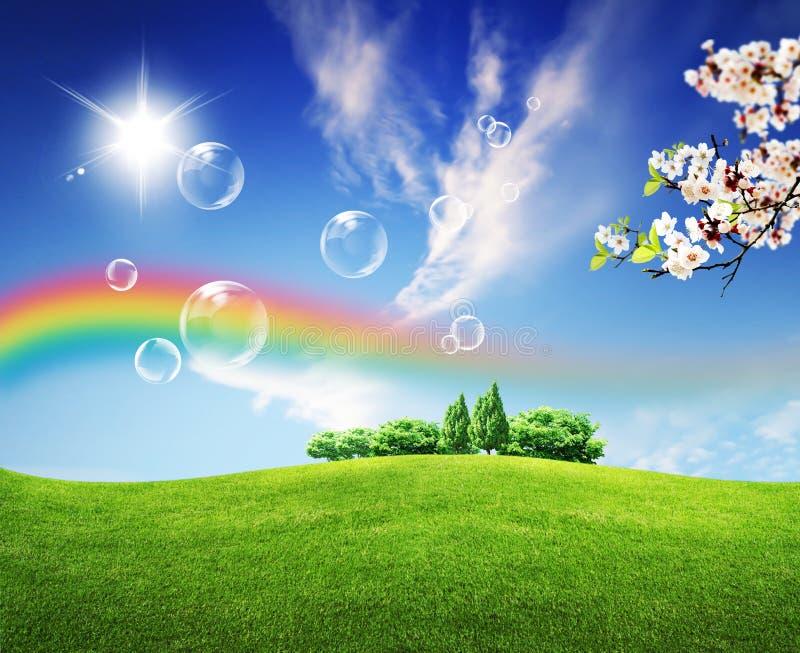 Campos del verde del paisaje del verano y cielo hermoso fotos de archivo libres de regalías