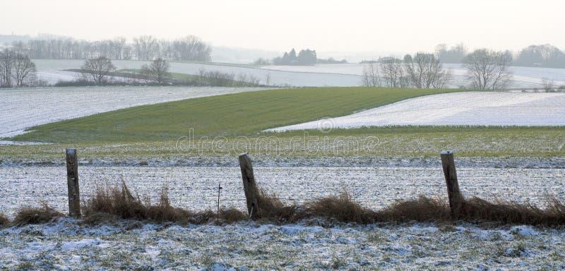 Campos detrás de una cerca rugosa en el invierno imagen de archivo