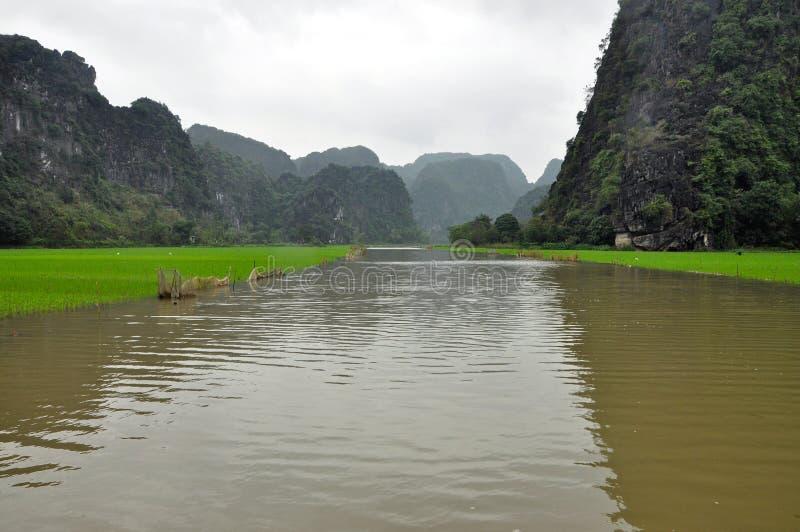 Campos do arroz e penhascos da pedra calcária, Tam Coc, Vietname fotos de stock