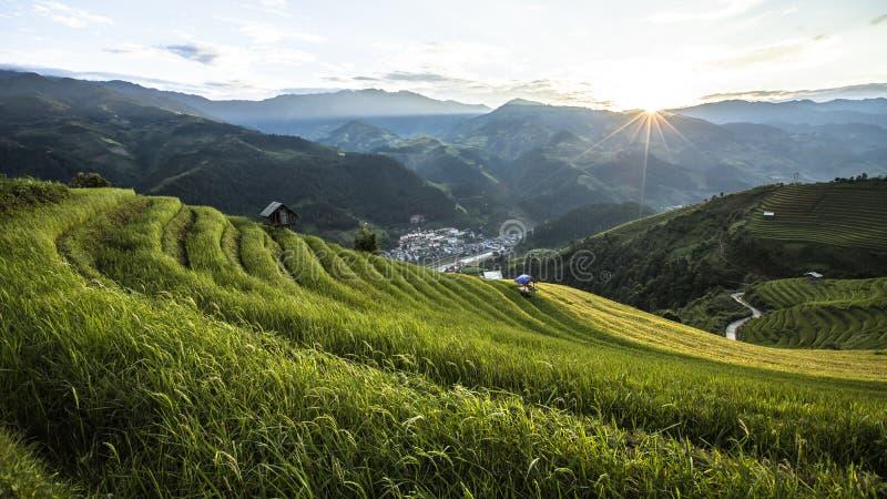 Campos do arroz em terraced de Vietname imagem de stock