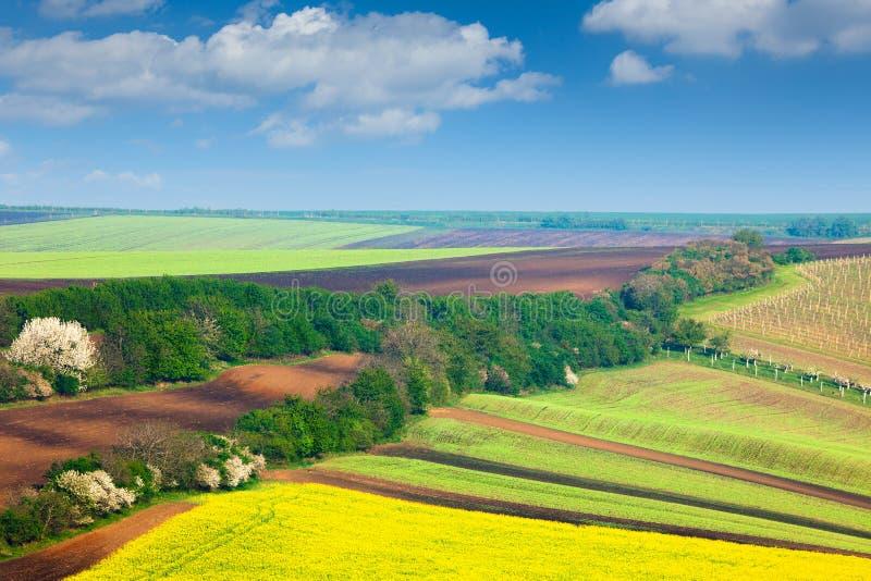 Campos do ountryside do ¡ de Ð e fundo coloridos do céu - landsca da natureza imagens de stock