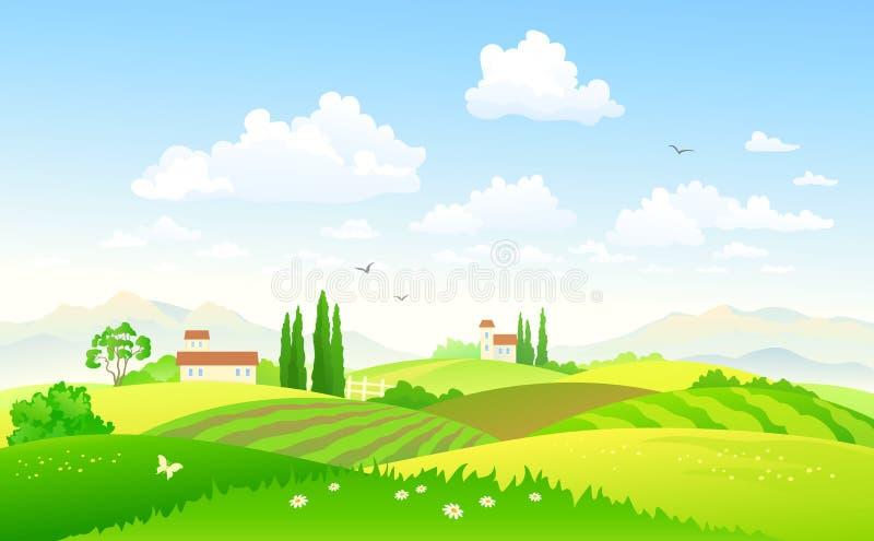 Campos do verão ilustração stock