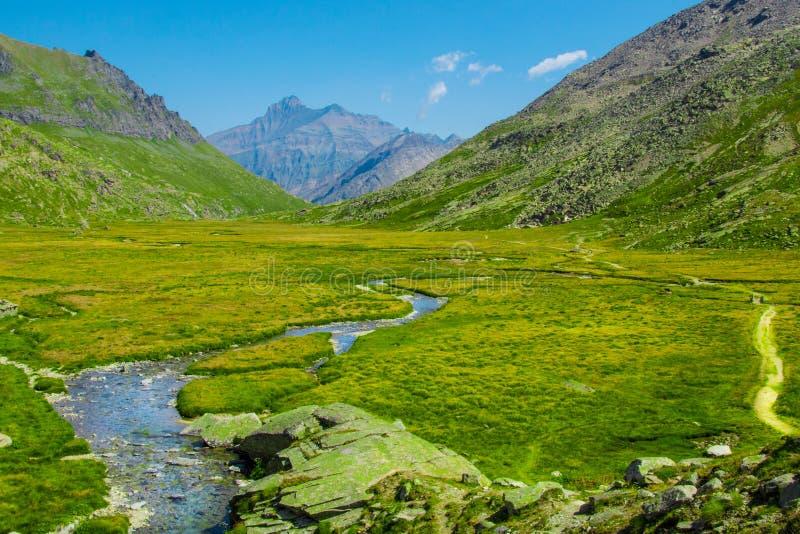 Campos do verde do trajeto do rio da montanha fotografia de stock royalty free