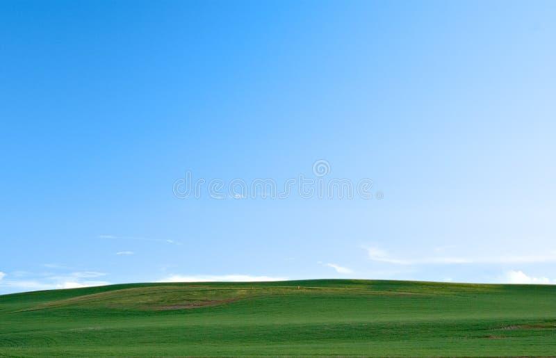 Campos e céu verdes fotos de stock