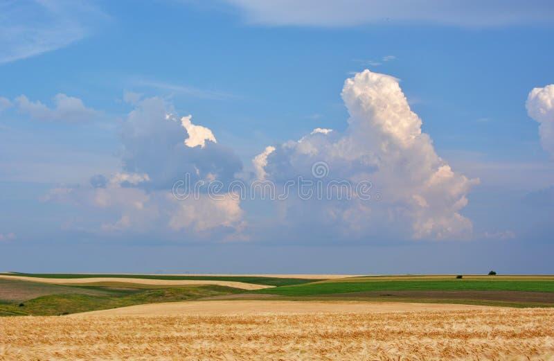 Campos e nuvens fotografia de stock royalty free