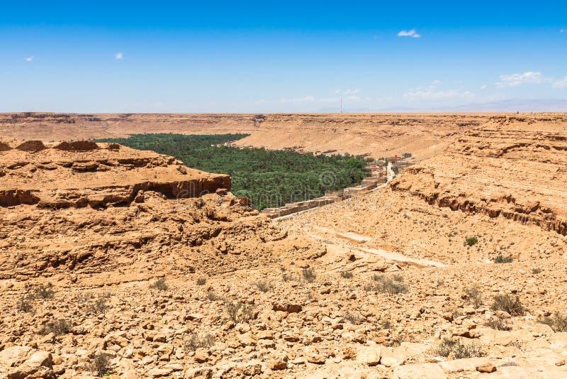 Campos e palmas cultivados no Norte de África A de Errachidia Marrocos fotografia de stock