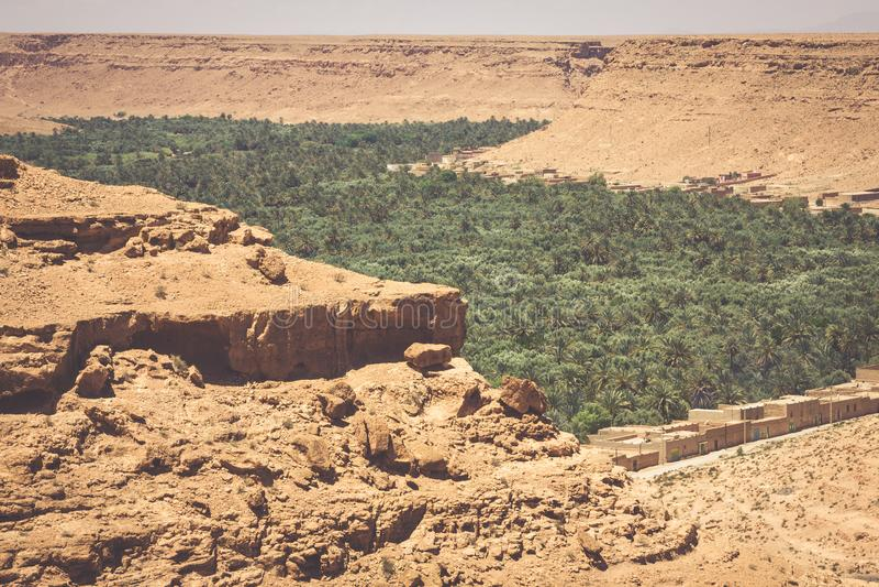 Campos e palmas cultivados no Norte de África A de Errachidia Marrocos imagens de stock royalty free