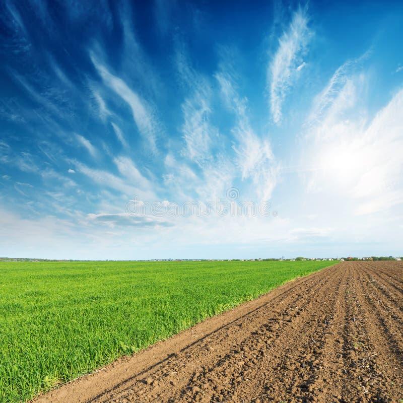 Campos e por do sol verdes e pretos no céu azul fotos de stock royalty free