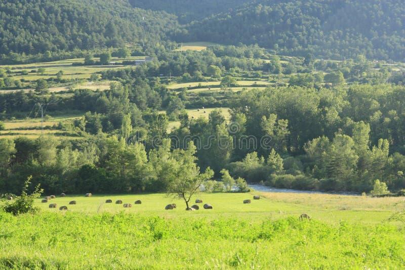 Campos e terras no Ara do rio, pyrenees fotografia de stock royalty free