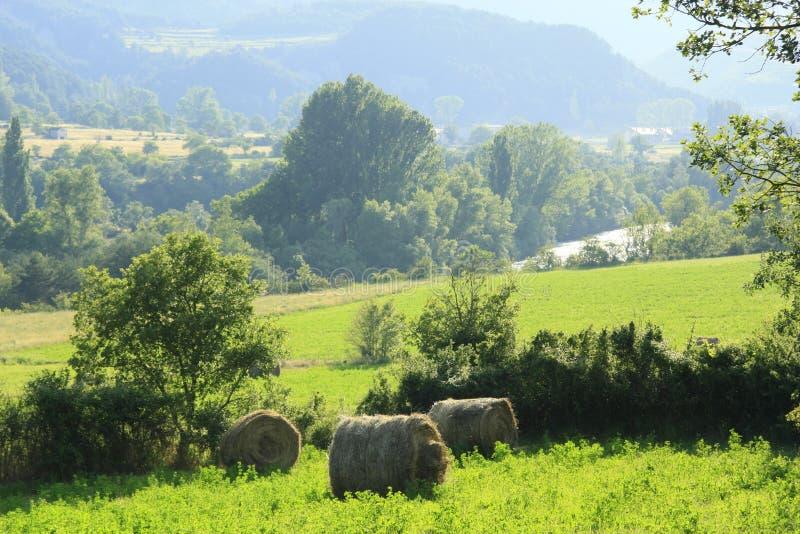 Campos e terras no vale do Ara do rio, pyrenees imagem de stock royalty free