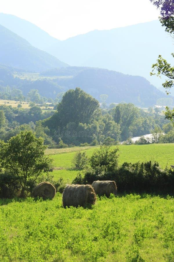 Campos e terras no vale do Ara do rio, pyrenees fotografia de stock royalty free