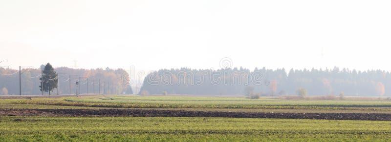 Campos e trilhas de estrada de ferro fotos de stock royalty free