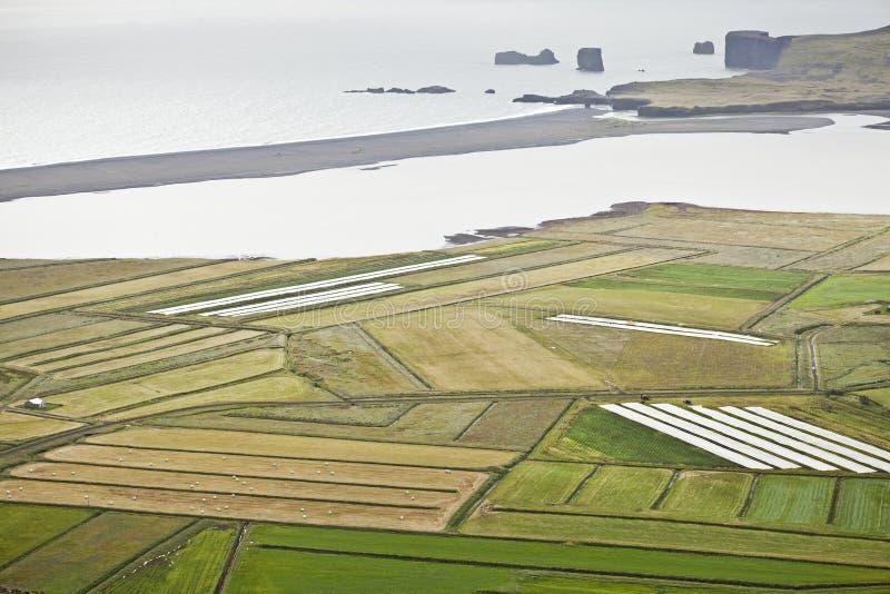 Campos em Islândia imagens de stock royalty free