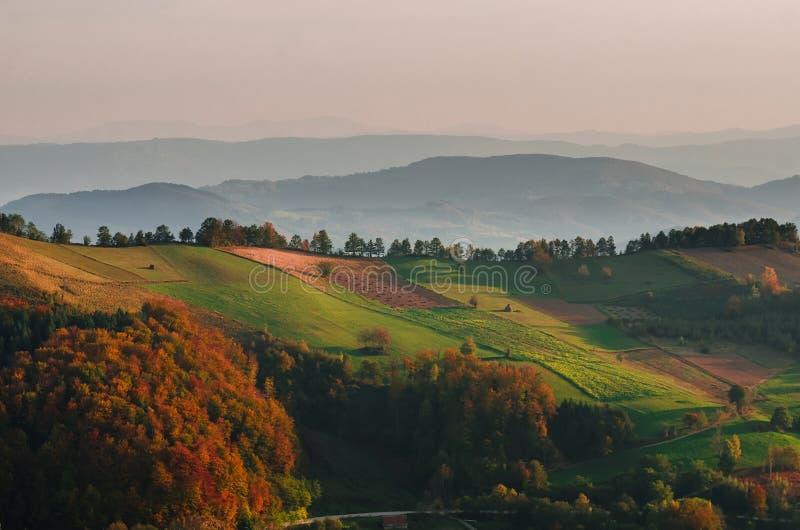 Campos em uma exploração agrícola na Sérvia ocidental foto de stock royalty free