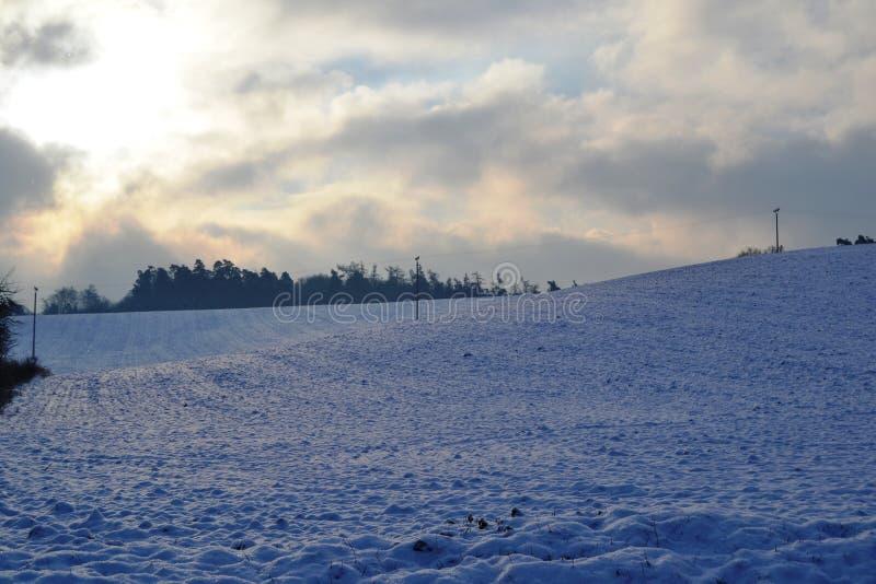 Campos en invierno foto de archivo
