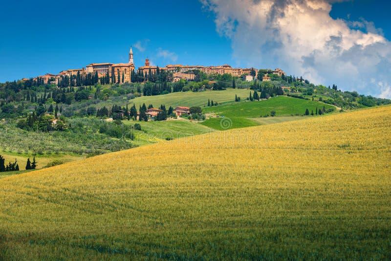 Campos espectaculares del paisaje urbano y de grano de Toscana, Pienza, Italia, Europa imagen de archivo