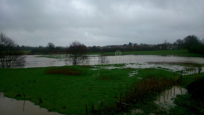 Campos inundados imagem de stock