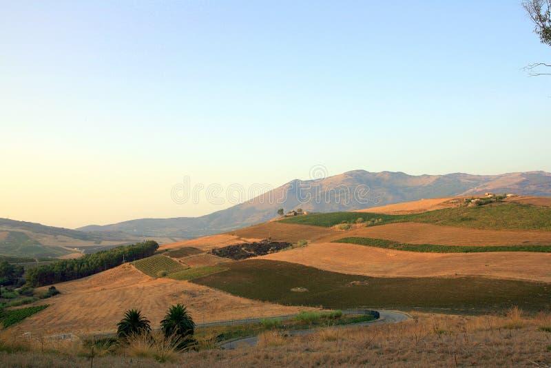 Campos quemados en Sicilia foto de archivo libre de regalías