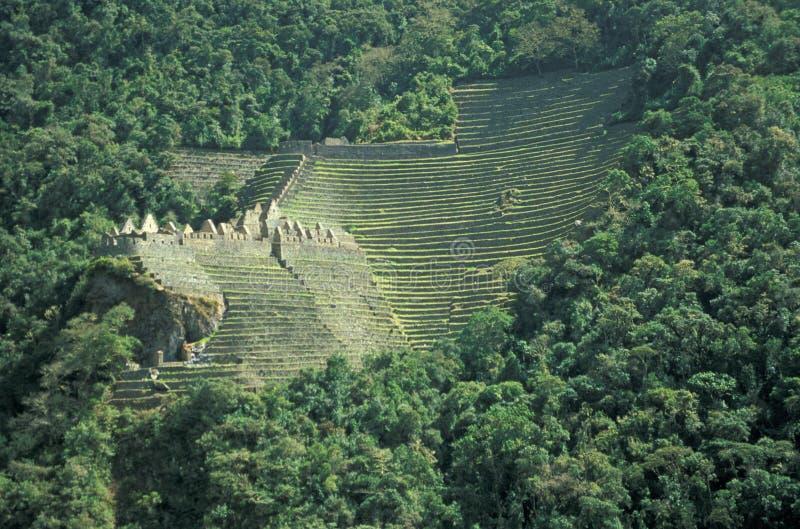 Campos Terraced da vila antiga do Inca imagens de stock royalty free