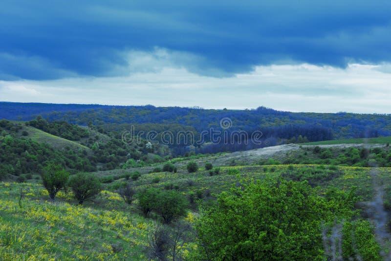 campos ucranianos f?rteis bonitos fotos de stock