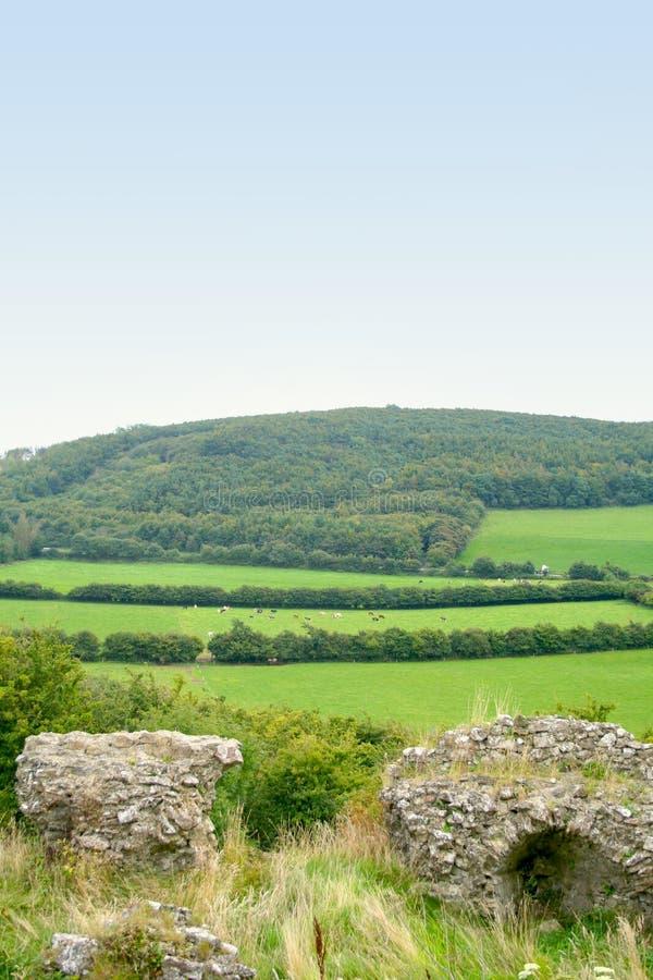 Campos verdes de Irlanda imagenes de archivo