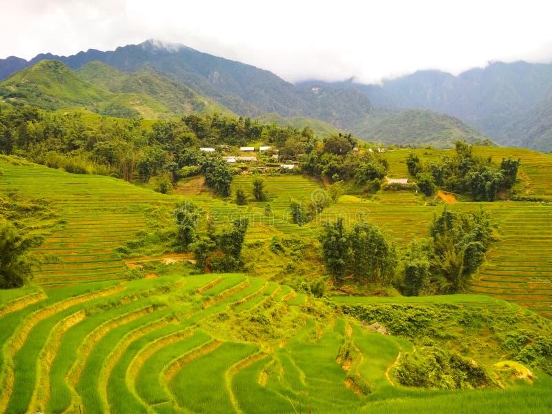 Campos verdes del arroz de la terraza en montañas con el pueblo solo fotografía de archivo