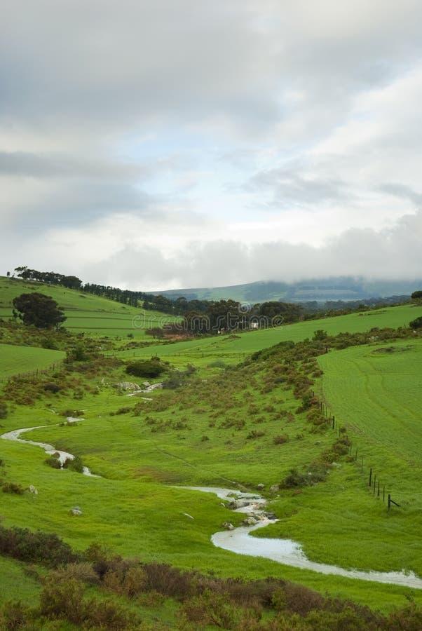 Campos verdes em um dia nebuloso imagem de stock royalty free