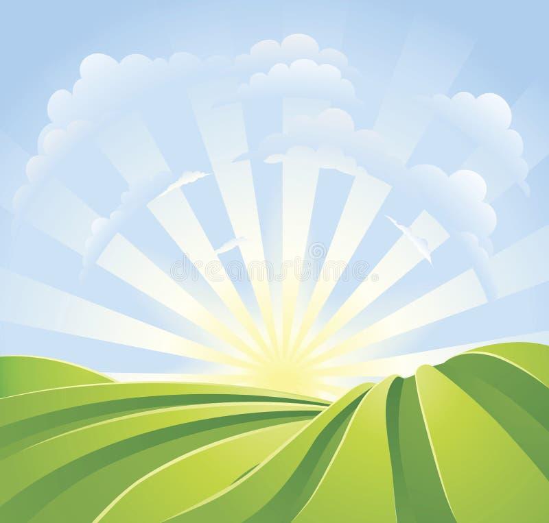 Campos verdes idílico com raias da luz do sol ilustração do vetor