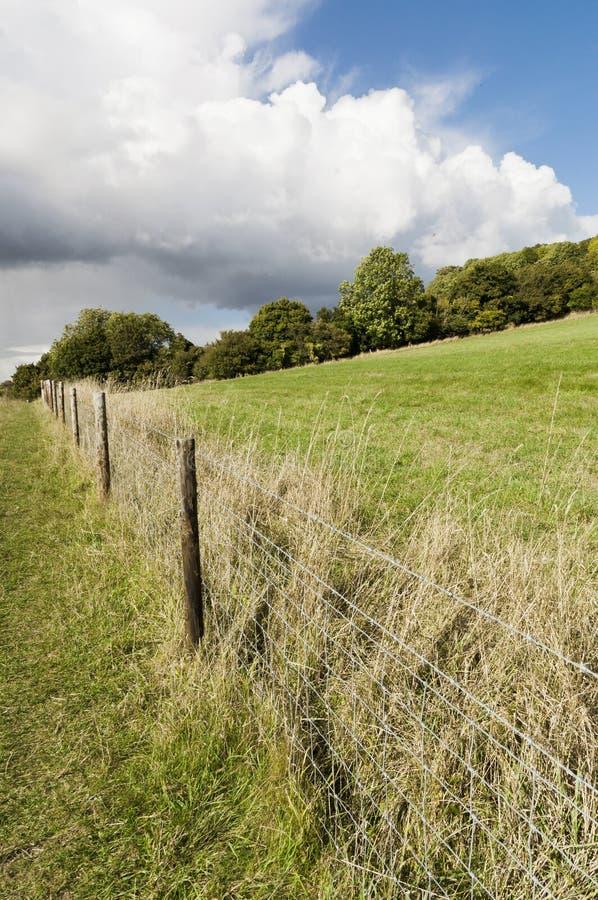 Campos verdes no campo britânico fotografia de stock royalty free
