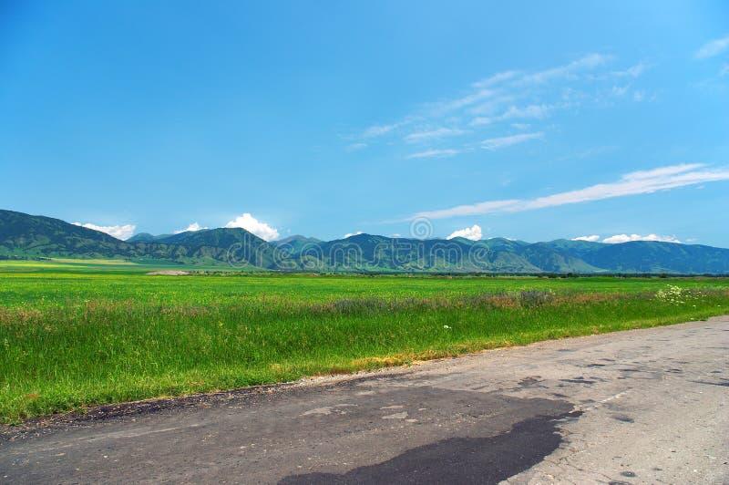 Campos verdes y cielos azules imagen de archivo libre de regalías