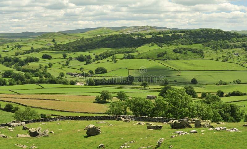 Campos y prados, valles de Yorkshire foto de archivo libre de regalías